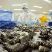 Việt Nam bác bỏ cáo buộc bơm Pectin vào tôm xuất khẩu