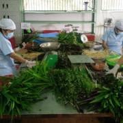 Long An: Nông dân muốn bỏ trồng rau an toàn – VietGap