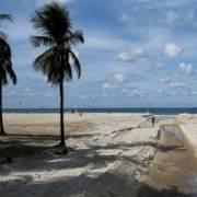 Phát hiện siêu vi khuẩn ở các bãi biển thi đấu Olympic