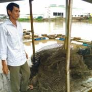Làng cá bè sống thấp thỏm bất an bên nhà máy giấy Lee & Man