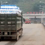 Bắc Giang đã xuất khẩu gần 63.000 tấn vải thiều