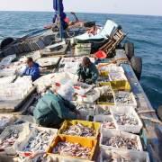 Quảng Trị bàn giải pháp chuyển đổi sinh kế cho ngư dân