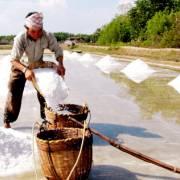 Muối và đường đều đắng vì nắng hạn