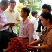 Vĩnh Long tính mở sàn giao dịch nông sản 'đấu' với thương lái Trung Quốc