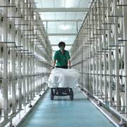 DN xuất khẩu xơ sợi Việt Nam lo phụ thuộc thị trường Trung Quốc