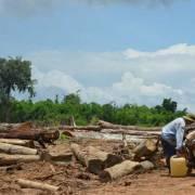 Bình Phước: Tan hoang hàng trăm ha rừng vì giao cho doanh nghiệp