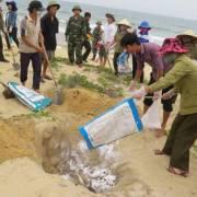 Thủ tướng ban hành định mức bồi thường cho người dân miền Trung