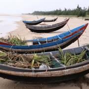 Quảng Trị thiệt hại 867 tỷ đồng vì thảm họa môi trường Formosa