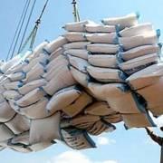 Phó Thủ tướng yêu cầu TCT Lương thực miền Nam sớm cổ phần hóa