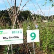 Tây Ninh chọn Nhật Bản làm đối tác phát triển nông nghiệp