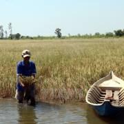 Mekong Connect: '500 anh em' đi tìm cơ trong nguy
