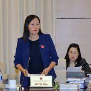 Chủ nhiệm UB Tư pháp đề nghị xem xét lại vụ PV Quang Thế