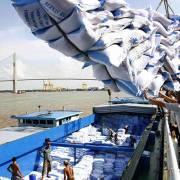 Xuất khẩu gạo: Hoa Kỳ khép cửa, Trung Quốc không ngừng o ép