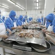 Xuất khẩu thủy sản sang Trung Quốc tăng mạnh
