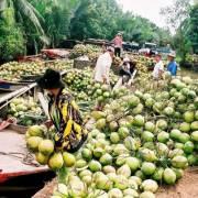 Vật vã thương hiệu nông sản Việt
