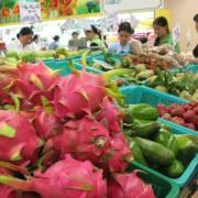 Kim ngạch xuất khẩu rau quả có thể lên mức 5 tỷ USD/năm
