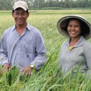 Miễn thuế sử dụng đất nông nghiệp từ năm 2017 đến 2020
