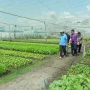 Khảo sát các điểm sản xuất nông sản tham gia Phiên chợ Xanh – Tử tế