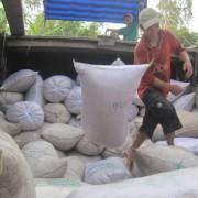 VFA muốn giảm lượng gạo xuất khẩu xuống 2-3 triệu tấn mỗi năm