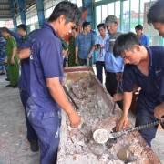 Lại phát hiện 529 kg ngà voi buôn lậu qua cảng Cát Lái