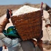 Xuất cấp 1.500 tấn muối ăn hỗ trợ dân vùng ngập Hà Tĩnh