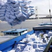Cần Thơ: Năm nay, xuất khẩu không đạt chỉ tiêu