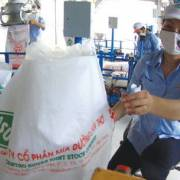 Ngành mía đường đau đầu với đường Thái Lan nhập lậu