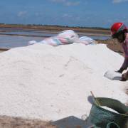 Bến Tre tồn 64.000 tấn muối