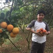 Giải mã phép màu ẩm thực Việt