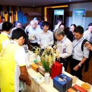 Phạm Chi Lan: 500 anh em gặp nhau ở Mekong Connect