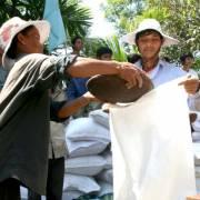 10 tỉnh xin hỗ trợ gạo cứu đói dịp Tết Nguyên đán Đinh Dậu