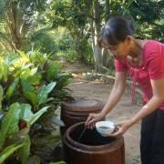 Rặt nước mắm đồng