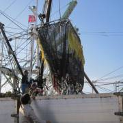 Doanh nghiệp Nhật muốn đẩy mạnh xuất khẩu thủy sản vào Việt Nam
