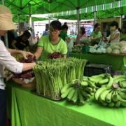 Gần 5 tấn chuối cấy mô Đồng Nai đã được bán ở Phiên chợ Xanh – Tử tế
