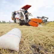 Tích tụ ruộng đất nhưng không để nông dân chịu thiệt