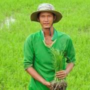 Đi thăm Hổ Mekong lập nghiệp