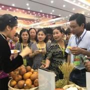 Kết nối nông sản Mekong