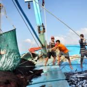 Hội nghề cá Việt Nam phản đối quy chế cấm đánh bắt cá của Trung Quốc