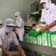 GS Võ Tòng Xuân: Cần lập Hội đồng lúa gạo