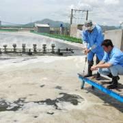 'Giải cứu' tôm cá: đau nam chữa bắc