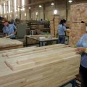 Doanh nghiệp chế biến gỗ lao đao vì thiếu nguyên liệu