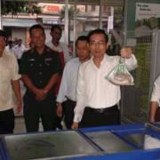 Đồng Nai mở cửa hàng bán thịt heo giúp đỡ nông dân