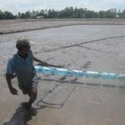 ĐBSCL: Tăng cường lấy nước dự trữ chống hạn mặn