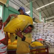 Nông dân cần có đại diện tham gia điều hành xuất khẩu gạo