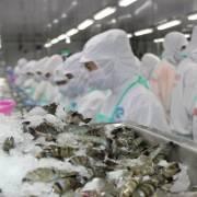 Úc tiếp tục nới lỏng điều kiện nhập khẩu tôm