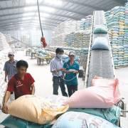 Kiến nghị sửa đổi cơ bản Nghị định 109 về xuất khẩu gạo
