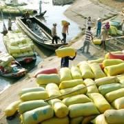 Dự thảo sửa đổi Nghị định 109 bãi bỏ nhiều 'điều kiện' xuất khẩu gạo