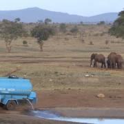 Người mang nước cho voi