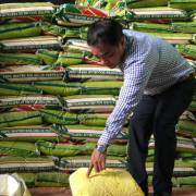 9 tháng, chi gần 1,7 tỷ đôla nhập phân bón, thuốc trừ sâu chủ yếu từ Trung Quốc