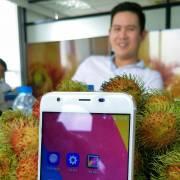 Thị trường smartphone Việt Nam: 'đâm đầu vào đá'